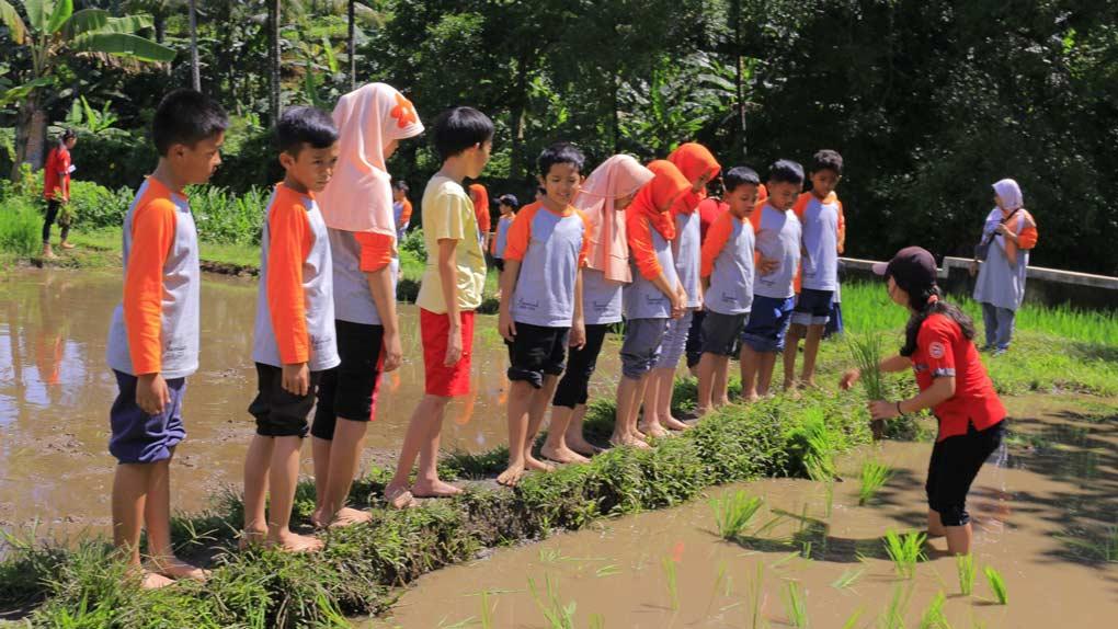 peduli lingkungan sejak dini sd silaturahim islamic school sekolah di cibubur